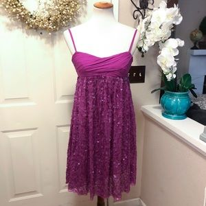 Chic Grape Colored Adrianna Papell Evening Dress